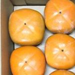 柿の栄養やカロリー、保存方法、そして食べ過ぎと便秘や下痢について