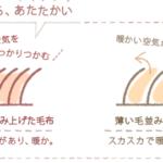 西川毛布を紹介、人気ランキングや洗濯などについて